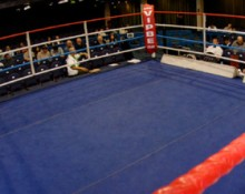 Professional Boxing
