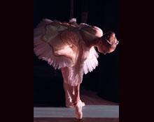 Vienna Festival Ballet 35th Anniversary Gala